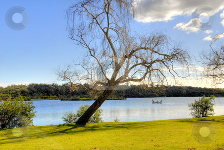 Lake Landscape stock photo, Landscape National Park Australia by Laura Smith