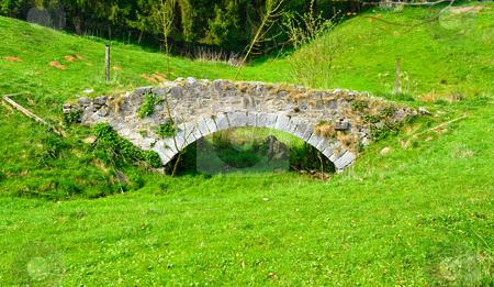 Footbridge stock photo, Footbridge in grassy meadow by Jaime Pharr