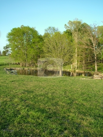 Pasture and Pond stock photo, Refreshing cool pond surrounded by new spring pasture and a greening tree line all under a turquoise blue sky. This is a perfect setting to take off your shoes and walk in the grass while enjoying the great outdoors. by Krystal McCammon