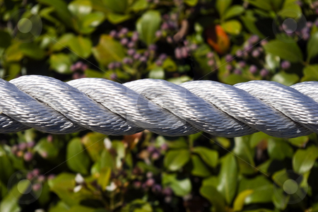 Landscaping Roap stock photo, Closeup of rope used as accent in landscaping. by Steve Carroll