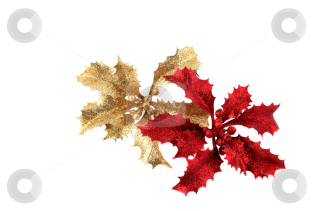 Christmas holly 2 stock photo, Shiny red and golden Christmas holly decorations by Stacy Barnett