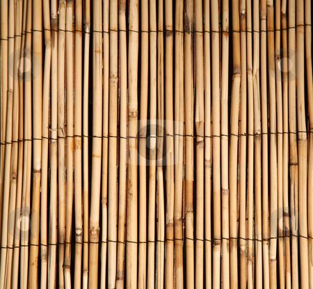 Bamboo pattern natural background stock photo, Rush or bamboo texture natural background by Stacy Barnett