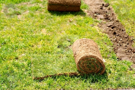 Ball of gras stock photo, Ball of grass in sunny day readi to be seed by Juraj Kovacik
