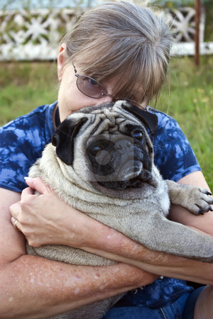 'Dougie' - a 4 year old male Pug dog with middle-aged lady stock photo, 'Dougie' - a 4 year old male Pug dog with middle-aged lady in their backyard by Steve Carroll