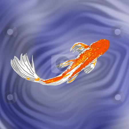 Orange Butterfly Koi stock photo, A beautiful orange butterfly koi swimming gracefully in a fish pond. by Karen Carter