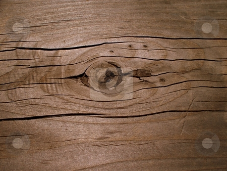 Wood Bench top stock photo, Wood with knots and grains by Carol Grimes