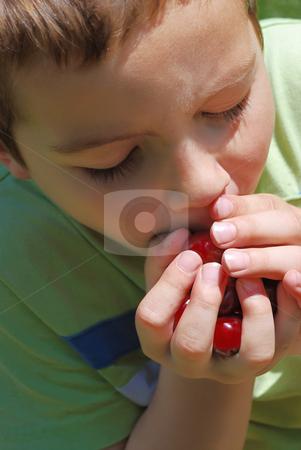 Boy eating bing cherries stock photo, Boy holding bing cherries in his hands and eating them. by Ivan Paunovic