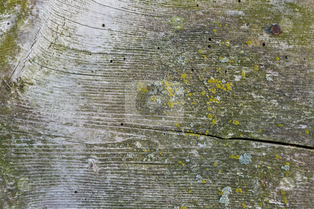 Background stock photo, Close-up of old wood with grain showing by Dennis Crumrin