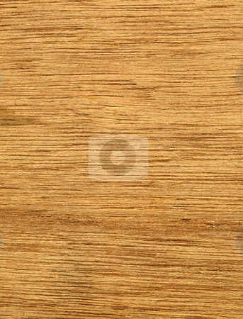 Wood grain texture macro abstract background. stock photo, Wood grain texture macro abstract background. by Stephen Rees
