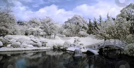 Japanese garden stock photo, Infrared panoramic  landscape of a japanese garden with a lake and bridge by Laurent Dambies