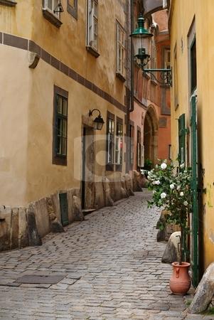 Flowers in narrow street stock photo, Flower by the wooden doors in old town by Juraj Kovacik