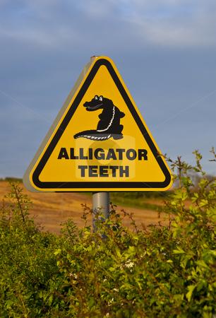 Alligator Teeth Sign stock photo, Alligator Teeth Sign by Jon Le-Bon