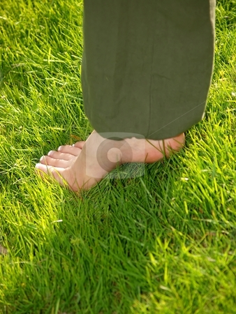 Foot in grass stock photo, A female foot with pedicure in tall green grass by Arve Bettum