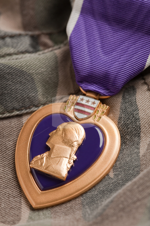 Purple Heart War Medal on Camouflage Material stock photo, Purple Heart War Medal on Camouflage Material by Andy Dean