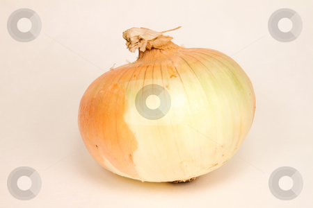 Yellow Onion stock photo, Yellow onion from the market by Richard Walker