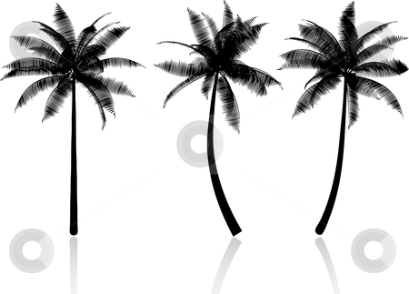 Palm trees stock vector clipart, Silhouettes of palm trees by Kirsty Pargeter