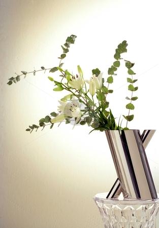 Modern vase stock photo, Flower in modern vase by Anastasia Tsoupa