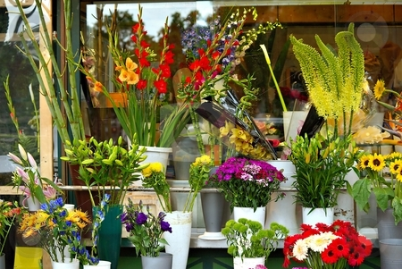 Flower shop stock photo, Different kind of flowers in a flower shop on street by Juraj Kovacik