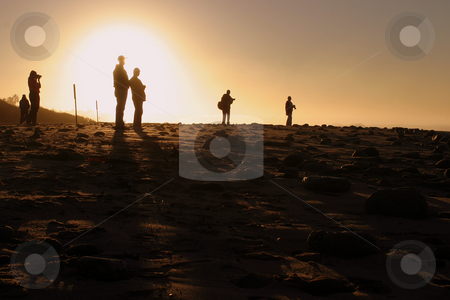Photographers At Sunset stock photo, People at sunset sunrise near the pier by the beach and ocean. by Henrik Lehnerer
