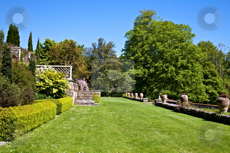 English Garden stock photo, A beautiful English garden with green lawn and steps by Norma Cornes