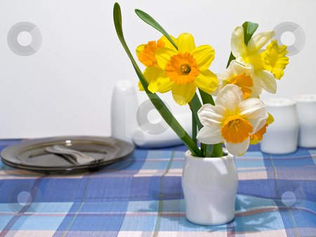Narcissus and crockery stock photo, Narcissus and crockery at the checkered blue tablecloth by Sergej Razvodovskij