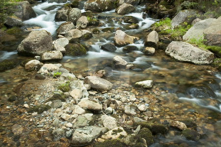 Waterfalls stock photo, Small waterfalls in the middle of a forest by Vlad Podkhlebnik