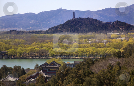 Yu Feng Pagoda From Lonevity Hill Summer Palace Willows Beijing  stock photo, Yu Feng Pagoda From Longevity HIll Summer Palace Willows Beijing China by William Perry