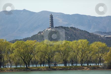 Yu Feng Pagoda Summer Palace Willows Beijing China stock photo, Yu Feng Pagoda on Yu Quan Hill from Summer Palace Willows Beijing China by William Perry
