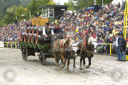 Beer cart stock photo, Beer cart drawn by cart horses in stadium in germany by Andreas Brenner