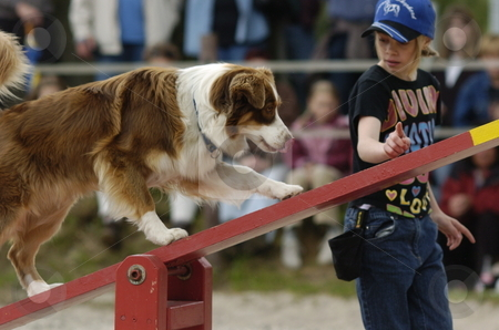 Seesaw stock photo, Dog crossing seesaw guided by his little mistress by Andreas Brenner