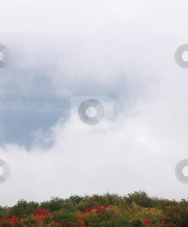 Fog Over Hillside stock photo, Fog rolling in over colorful wooded hillside in Pennsylvania. by Kathy Piper