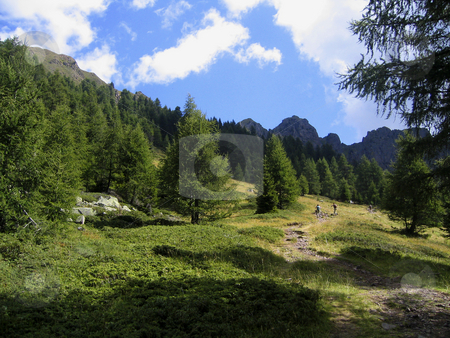 Trekking in the Alps stock photo, Italian Alps - A path in the mountains by Alessandro Rizzolli