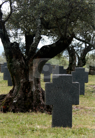 Grave stock photo, Graves of the second world war german soldiers on spain by Marc Torrell