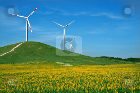Eolic windmill stock photo, Eolic energy field with windmills by Marc Torrell