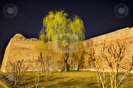 City Wall Park with Willow Tree Beijing China  stock photo, Night Shot City Wall Park Beijing, China with Green Willow  This is the city wall park with the original wall that surrounded the old city of Beijing. by William Perry