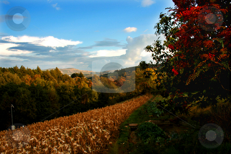 Autumn valley stock photo, Autumn valley landscape in Geres by Marc Torrell
