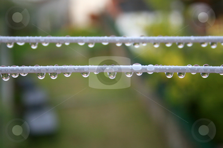Drops stock photo, Drops of rain water on a wire. by Marc Torrell