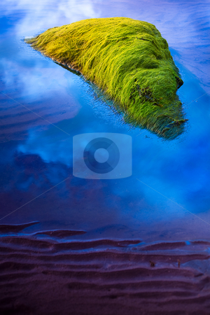 Flying seaweed stock photo, A seaweed covered stone flying in a blue sky over a sea of sand by Dirk Ercken