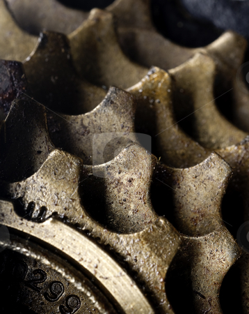 A macro of dirty bicycle gears stock photo, A macro of dirty bicycle gears by Vince Clements