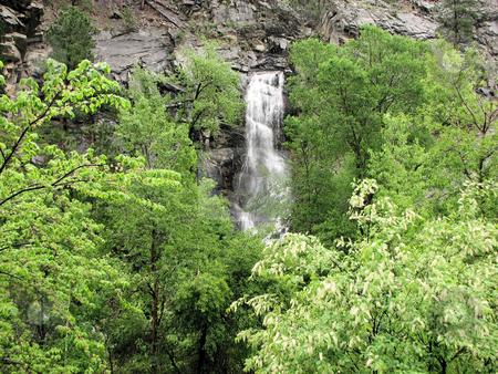 Bridal Veil Falls stock photo, Taken In Spearfish Canyon In South Dakota! by Brian Meyer