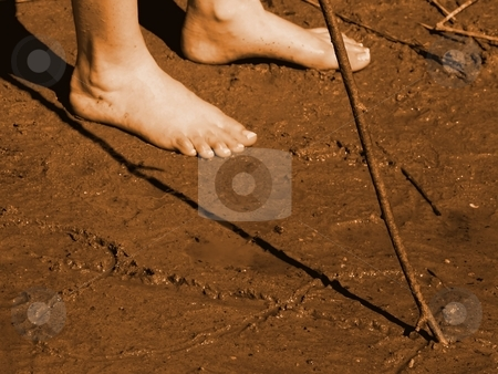 Drawing in the sand stock photo, A person is drawing in the wet sand with a wooden stick or branch by Arve Bettum