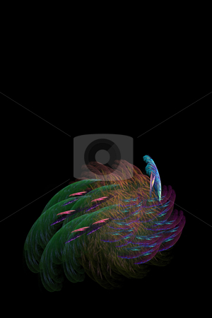 Peacock Fractal stock photo, An abstract fractal design that closely resembles a peacock. by Todd Arena