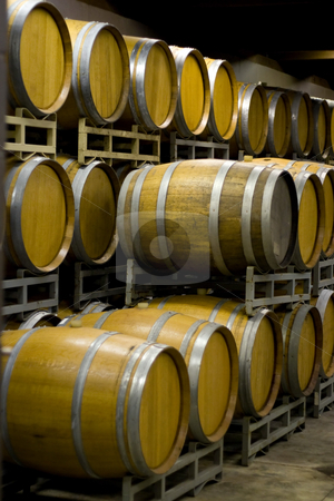 Winery Cellar Barrels stock photo, A vineyard cellar where barrels of wine age in stacked rows. by Todd Arena