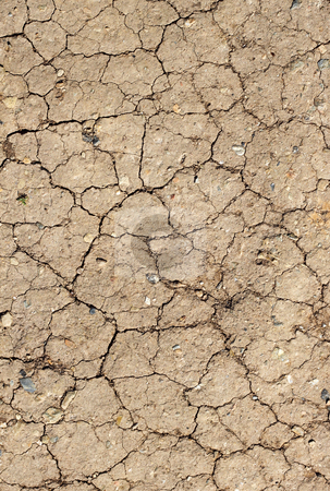 Cracked mud abstract background. stock photo, Cracked mud abstract background. by Stephen Rees