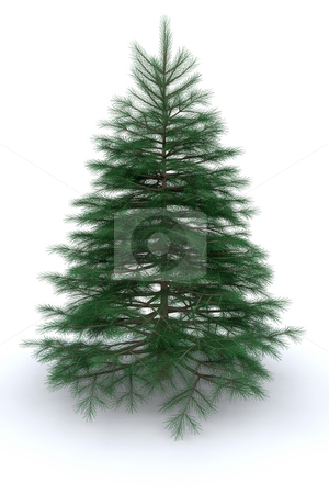 Christmas tree stock photo, 3D render of a Christmas tree by Kirsty Pargeter