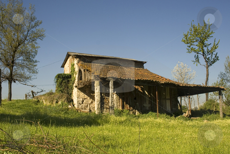 Lost Cabin stock photo, Old rural cabin during spring on a meadow by Marc Torrell