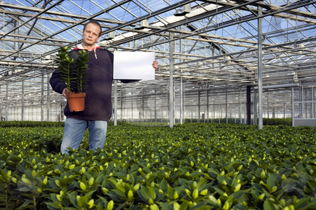 Blank sign in a glasshouse stock photo, A man, holding a potted plant in one hand, and a blank sign for your message in the other in a huge glasshouse by Corepics VOF