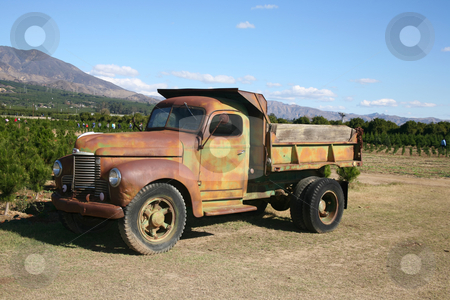Rusty truck 2 stock photo, Rusty dump truck parked on a commercial Christmas tree farm open for business by Stacy Barnett