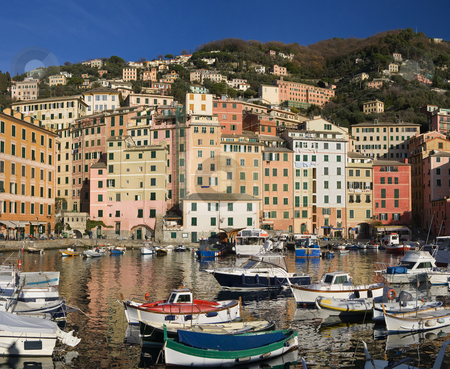 Little port of Camogli stock photo, The characteristic houses and the marina of Camogli, famous small town near Genoa, Italy by ANTONIO SCARPI