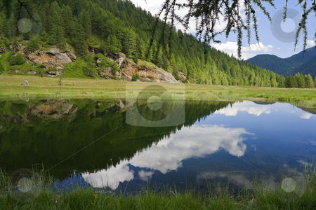 Lago Covel stock photo, Water reflection in Covel Lake, amazing place in italian alps in Pejo valley by ANTONIO SCARPI